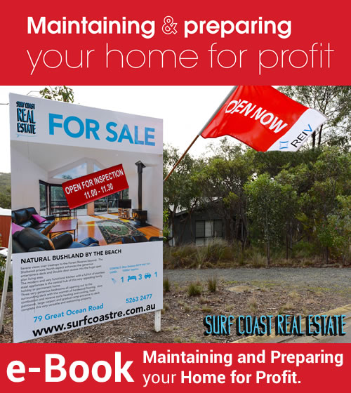 Order your eBook on how to Prepare your Home for Profit.